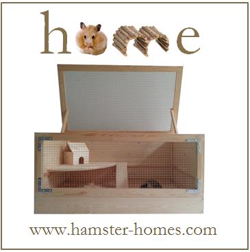 Hamster Homes Avatar