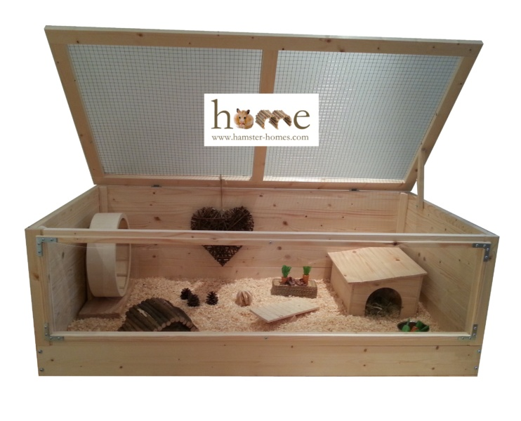 Hedgehog Home with Perspex front