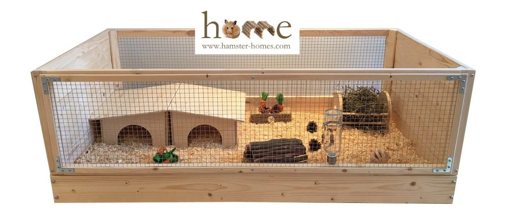 Guinea pigs setting up a home for your guinea pigs for How to build a guinea pig house