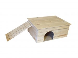 Guinea Pig House with Ladder on Left