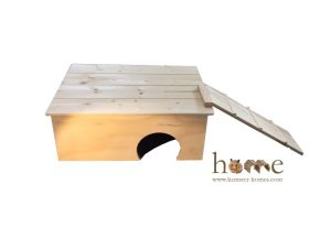 Guinea Pig House with Platform Roof and Ladder - Front view