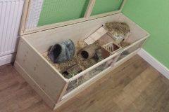 First-180cm-Guinea-Pig-Home