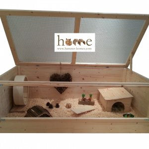 Large African Pygmy Hedgehog Cage with Perspex front