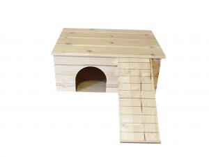Guinea Pig House with Ladder in Front