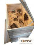 2 tier guinea pig cage – Interior shot